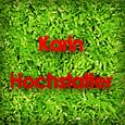 hochstatter_th